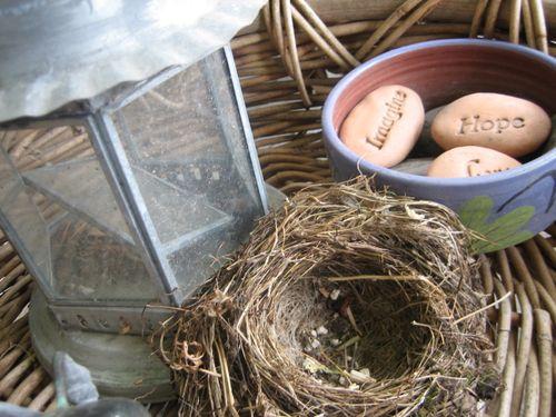 Nest5
